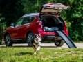 Nissan X-Trail приспособили для перевозки собак - фото 1