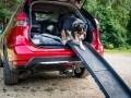 Nissan X-Trail приспособили для перевозки собак - фото 4
