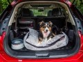 Nissan X-Trail приспособили для перевозки собак - фото 6