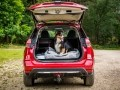 Nissan X-Trail приспособили для перевозки собак - фото 8
