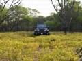 Индусы превратили старую Mahindra в Jeep Wrangler - фото 8