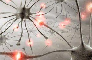 Винницкий мастер попал в ДТП из-за приступа эпилепсии