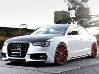 �������� ������ ����������� ��������� ��� Audi A5 Sportback