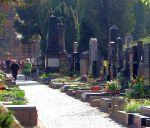 Германка прокатилась на автомашине по кладбищу и сорвалась в гробницу