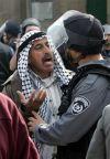 Английские сотрудники полиции в ударе от водителей-мигрантов