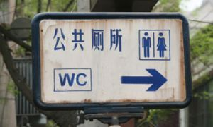Китайские автолюбители играют против номерных символов с аббревиатурой WC