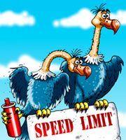 Германские социал-демократы рекомендовали ограничить скорость на автобанах