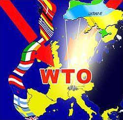 Украину утвердили в ВТО. Когда поменяются расценки (обновлено)