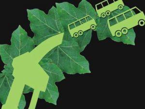 Биотопливо сгубит Землю