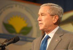 Вице-президент Буш призвал производителей автомобилей к повышению числа электрокаров