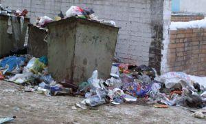 Чехи обучились делать биотопливо из мусора