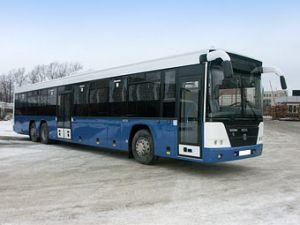 Команда ГАЗ перекроет несколько предприятий