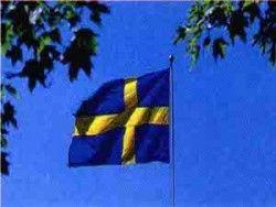Власти Швеции продлили период реструктуризации Сааб