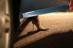 19 августа на автодроме Крачка прошли женские автосоревнования Миссис ФОРСАЖ 2007