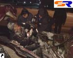 """В Киеве """"ВАЗ"""" на абсолютной скорости въехал в грузовой автомобиль - 2 мертвеца. ФОТО."""