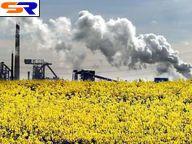 В Восточной Украине возведут автозавод по изготовлению биотоплива