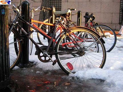 Брошенные велосипеды. ФОТО