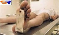 Германскую автомобилистку наказали за транспортировку мертвеца