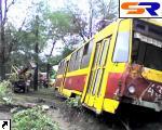 В Запорожье трамвай сошел с рельсов и налетел в дерево.