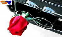 В 2007 году Япония начнет переход на биобензин