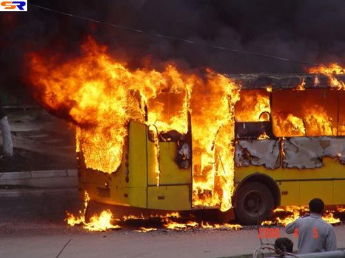 Вот такгорят автобусы. ФОТО