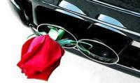 К 2012 году выхлопы европейских машин станут на четверть чище