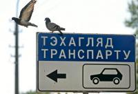 Молодежная общественность требует от Рудьковского вернуть право на выполнение технического осмотра ГАИ