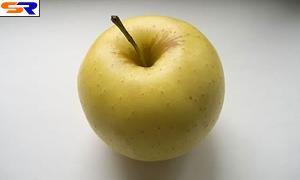 Причиной ДТП в Германии стало яблоко