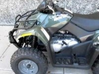 Обзор Arctic Cat 300