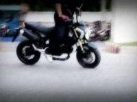 Honda MSX125 в статике и динамике