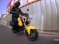 Тест Honda MSX125