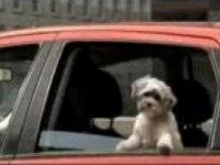 Прикольная реклама Dodge Caliber