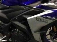 Yamaha YZF-R3 в статике