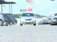 Тест-драйв Opel Corsa и Opel Antara от АВТОБАН
