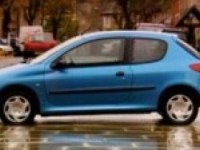 Видео обзор Peugeot 206 от TopGear