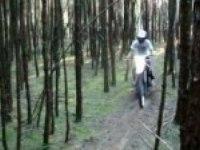 Езда по лесу на Yamaha WR125R
