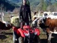 Видеообзор Honda Rancher AT от MotoUSA