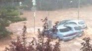 Ужасающие кадры наводнения в Австралии: когда водоплавающими становятся даже кенгуру и автомобили!