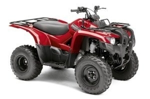 Yamaha Grizzly 300