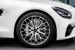 Лунный синдром: купе и родстер Mercedes-AMG GT опять обновили - фото 34