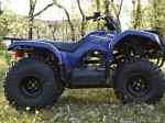 фото Yamaha Grizzly 125 №3