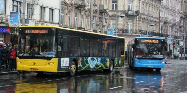 Общественный транспорт возобновляет работу