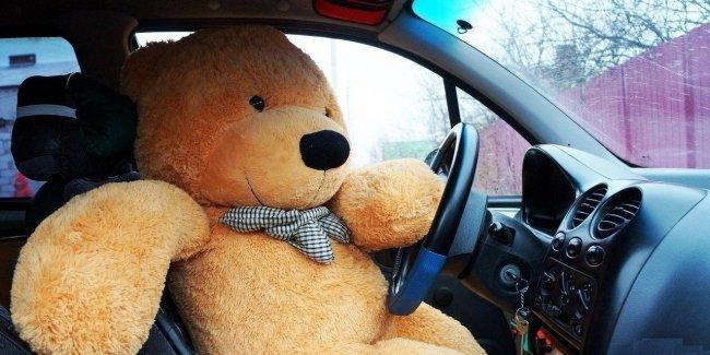 Плюшевый медведь проверил водителей на внимательность