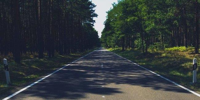 Укравтодор планирует развивать сеть лесных дорог: Отремонтированные дороги на Луганщине помогли пожарным быстрее попадать к местам лесных пожаров