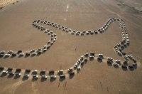 180 внедорожников Nissan создали огромную живую фигуру сокола