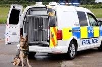 Volkswagen показал фургон для четвероногих полицейских