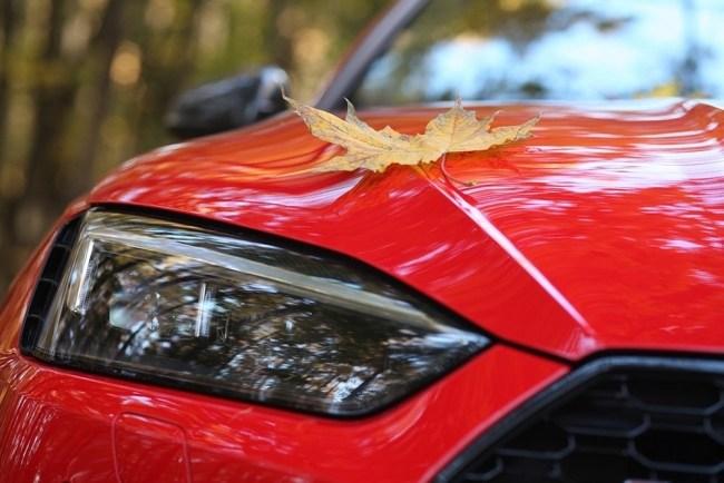 Cуперкар-интеллигент. Audi RS 5 Coupe