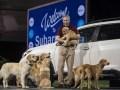 Трехрядный SUV: Subaru представила кроссовер Ascent - фото 18